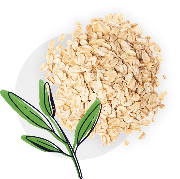 Oats-With-Plant-And-Circle
