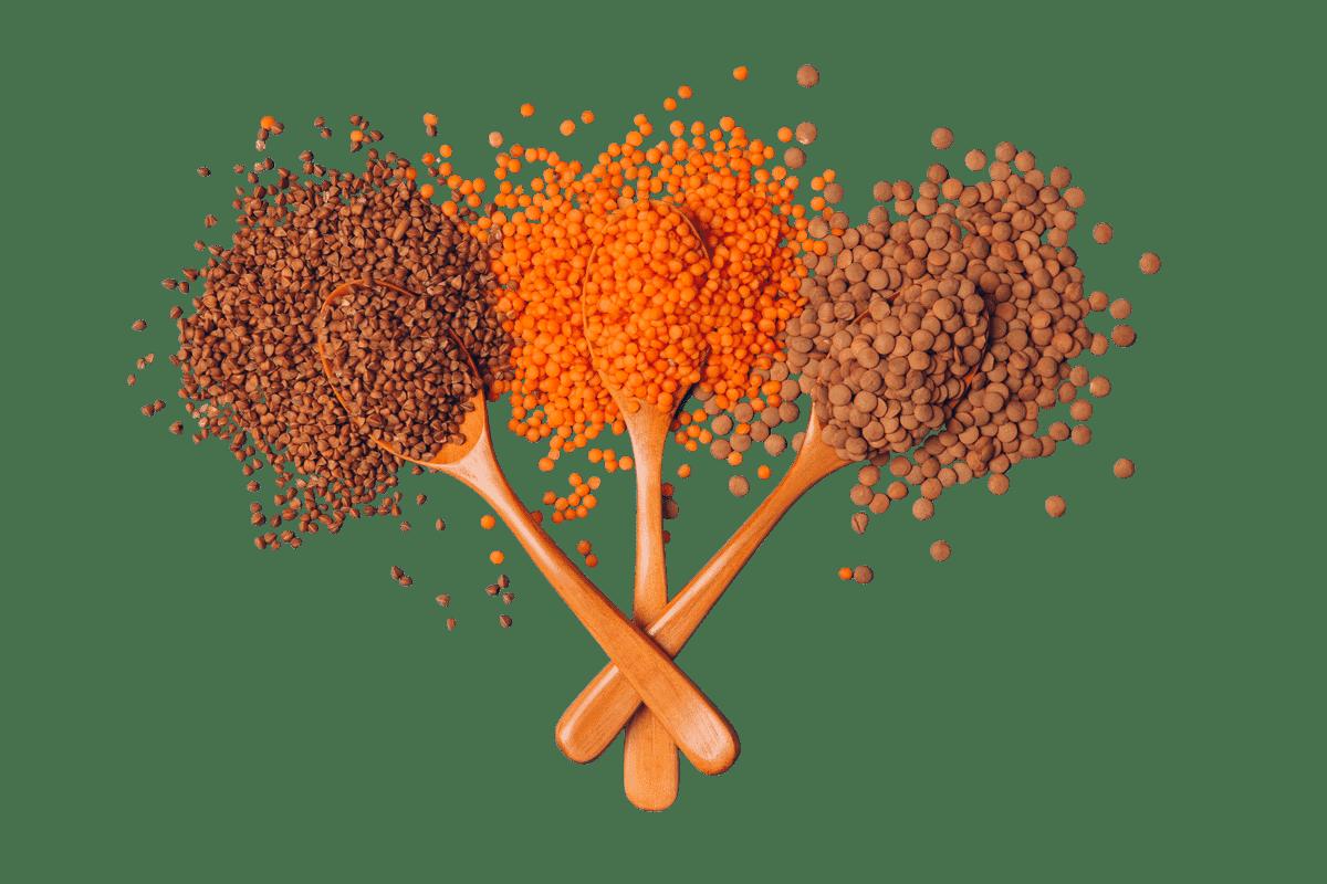wooden-spoons-homepageO